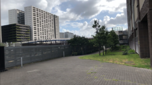 ザ・東京タワーズシータワー