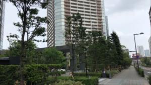 ザ・豊洲タワー